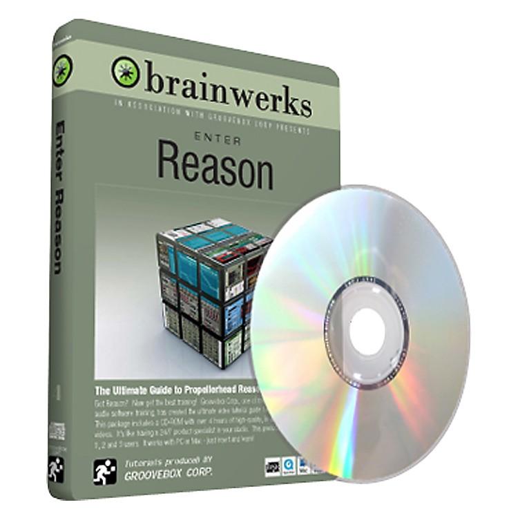 BrainwerksEnter Reason