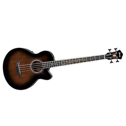 Ibanez Exclusive Acoustic-Electric Bass