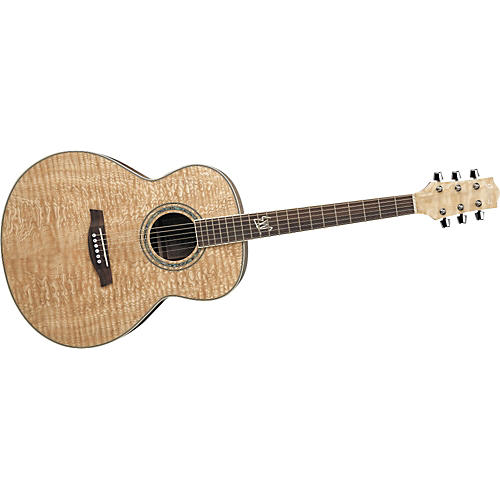 Ibanez Exotic Wood EW20AS Acoustic Guitar