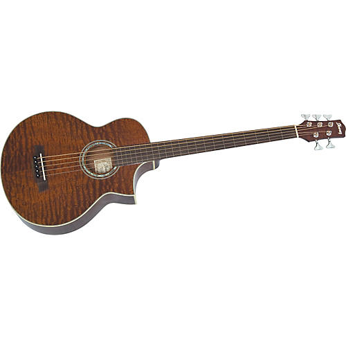 Ibanez Exotic Woods 5-String Fretless Acoustic-Electric Bass
