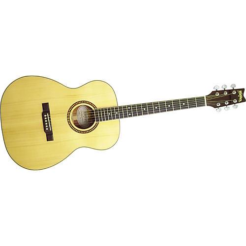 Washburn F10S Acoustic Guitar