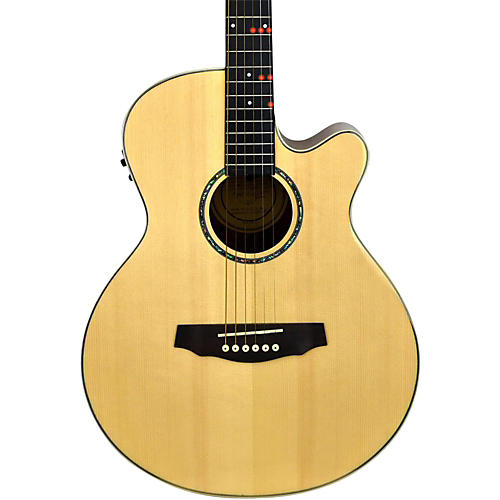 fretlight fg 529 pro acoustic electric guitar with built in lighted learning system musician 39 s. Black Bedroom Furniture Sets. Home Design Ideas
