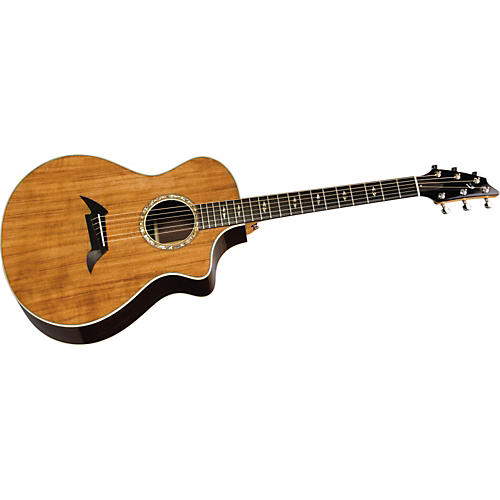 Breedlove Focus SE Special Edition Acoustic-Electric Guitar