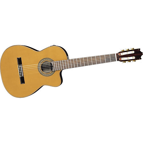 Ibanez G Series G480ECENT Classical Acoustic-Electric Guitar