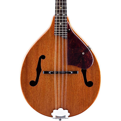 Gretsch Guitars G9310 New Yorker Supreme Mandolin Natural