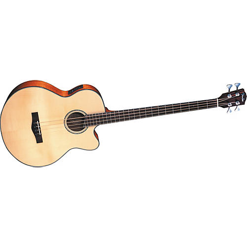 Fender GB-41SCE Acoustic-Electric Bass Guitar