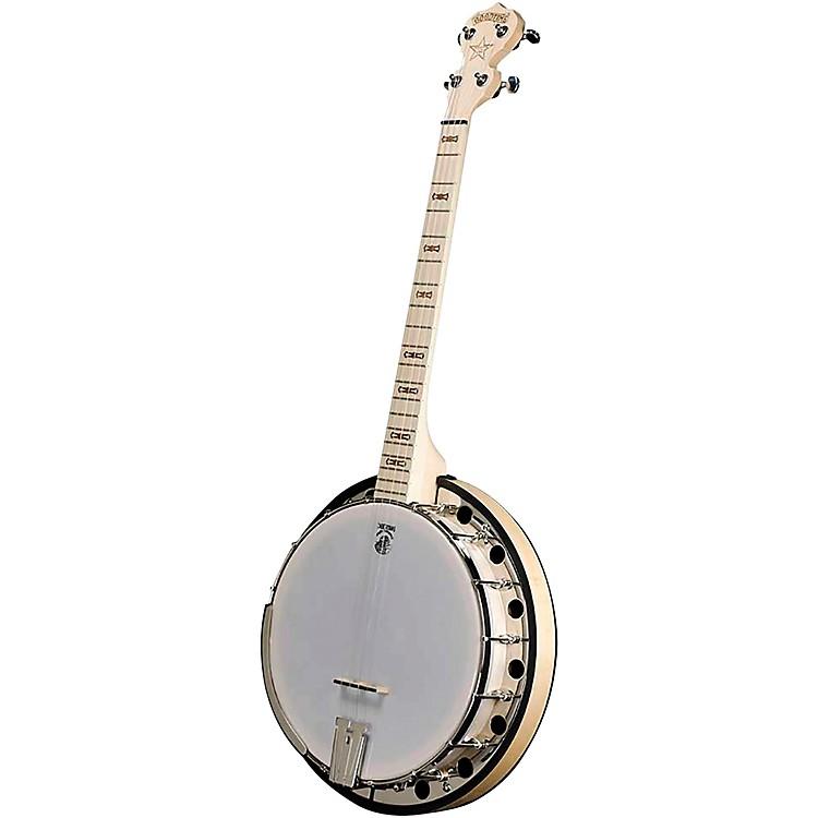 deering goodtime 2 19 fret tenor banjo musician 39 s friend. Black Bedroom Furniture Sets. Home Design Ideas