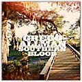 Universal Music Group Gregg Allman - Southern Blood Limited Edition Vinyl LP thumbnail