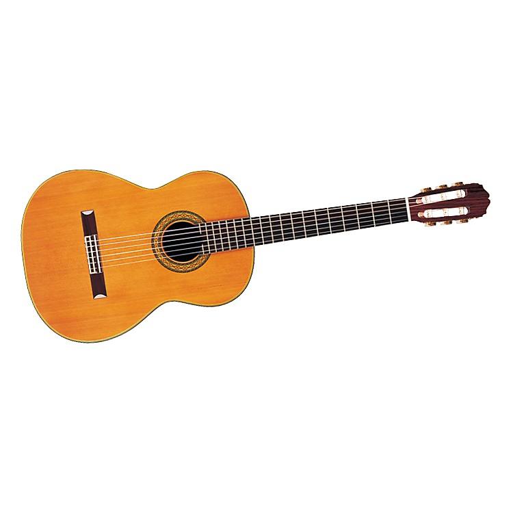 TakamineHirade H5 Nylon-String Acoustic Guitar with Case