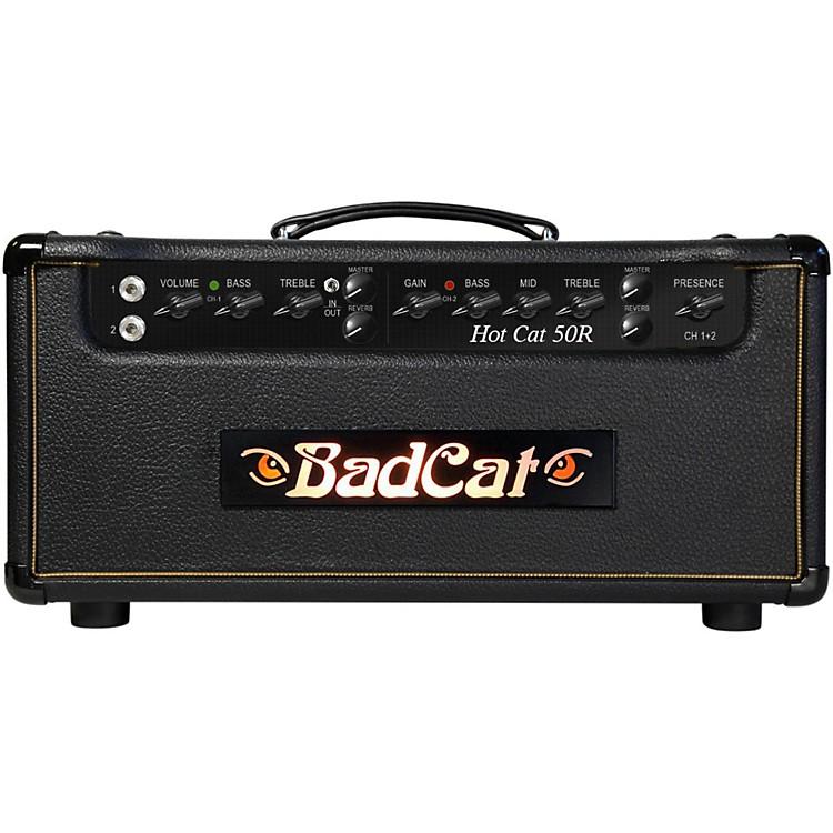 Bad CatHot Cat 50W Guitar Amp Head with Reverb
