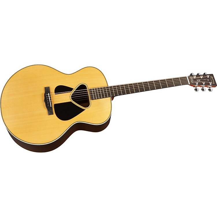 MartinJSO Sing Out 60th Pete Seeger Acoustic Guitar