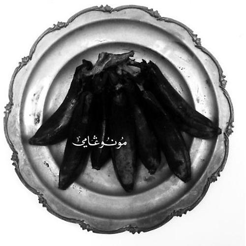 Alliance Land of Kush's Egyptian Light Orchestra - Monogamy