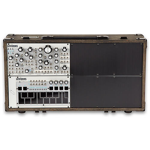 pittsburgh modular synthesizers lifeforms system 301 musician 39 s friend. Black Bedroom Furniture Sets. Home Design Ideas