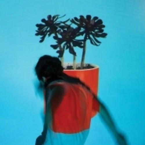 Alliance Local Natives - Sunlit Youth