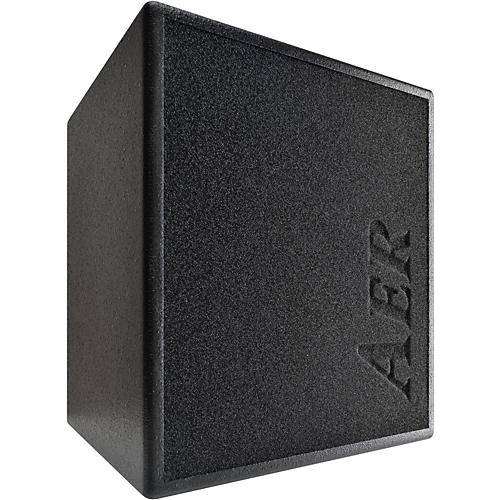 AER MM200 Monte Montgomery 2x8 200W Acoustic Combo Amp-thumbnail