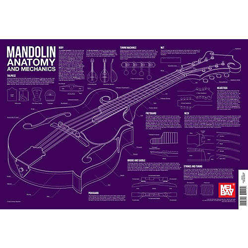 Mel Bay Mandolin Anatomy and Mechanics Wall Chart