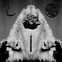 Matchess - Seraphastra