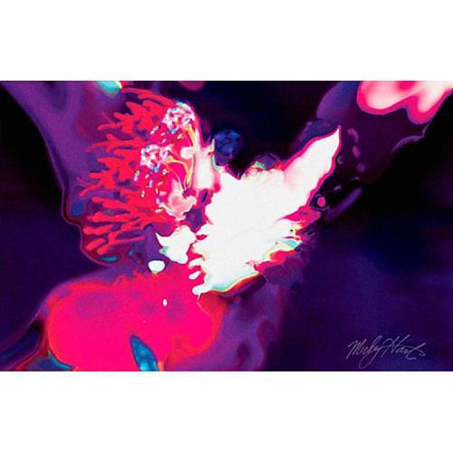 Mickey Hart's Drum Art Mystical Flight by SceneFour
