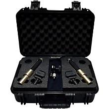 AEA Microphones N22 Stereo Microphone Kit