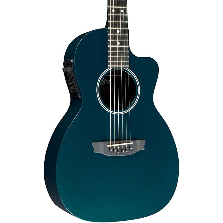 RainsongP14 6-string Parlor with 14-fret N2 neck