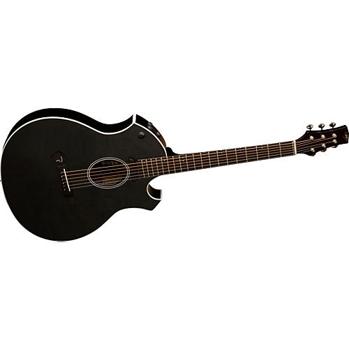 Parker Guitars P6E Acoustic-Electric Guitar