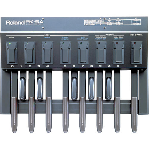 Roland PK-5A Dynamic Foot Pedal and MIDI Controller