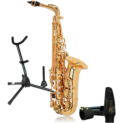 P. Mauriat PMXA-67RGL Professional Gold Lacquered Alto Saxophone Kit-thumbnail