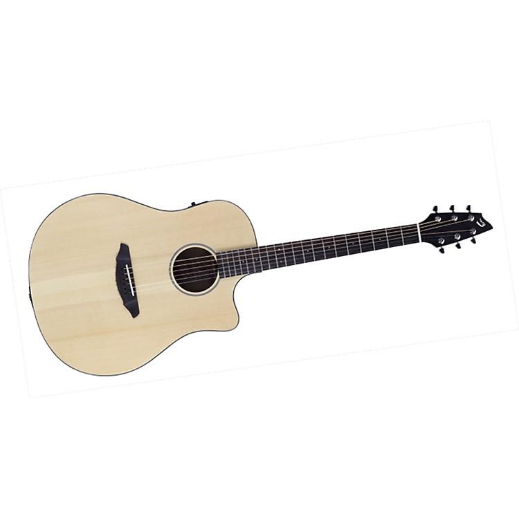 BreedlovePassport D250/SMe Acoustic Guitar