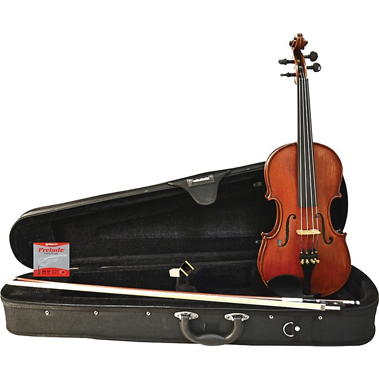 FloreaPersoana Violin Outfit3/4 Size