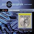 EastWest Prosamples Vol. 32 Ethnic Adventures CD-ROM thumbnail