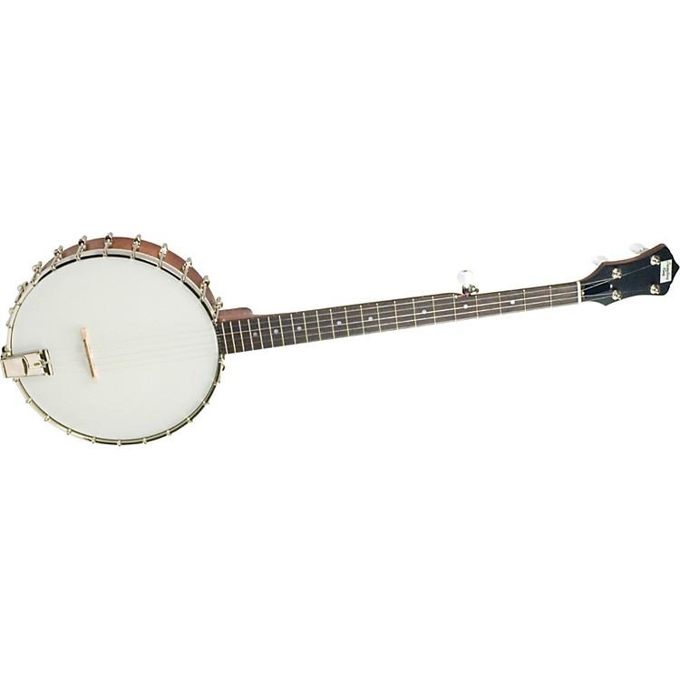 Recording KingRK-O25 Madison Open-Back Banjo