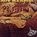 Alliance Roy Harper - Flat Baroque & Berserk thumbnail