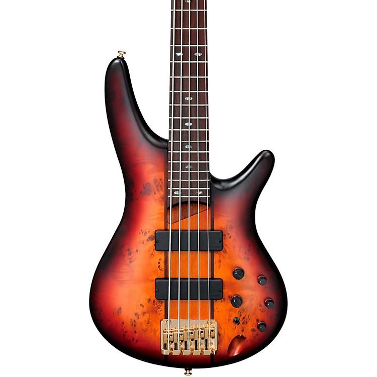 ibanez sr805 5 string electric bass guitar natural musician 39 s friend. Black Bedroom Furniture Sets. Home Design Ideas