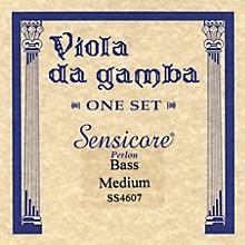 Super Sensitive Sensicore Bass Viola de Gamba Strings Set