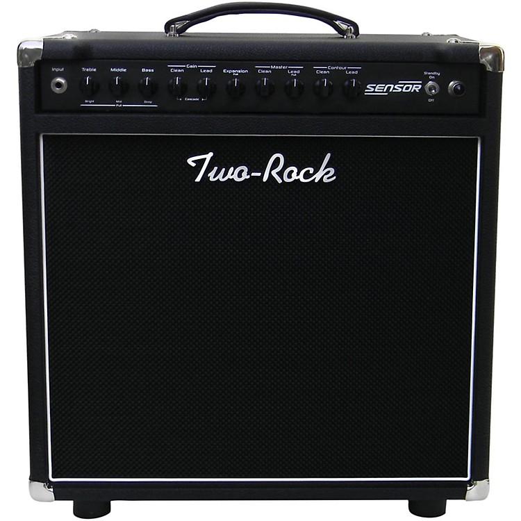 Two RockSensor 50W 1x12 Tube Guitar Combo