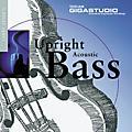 Tascam Seyer: Upright Acoustic Bass Giga CD-thumbnail