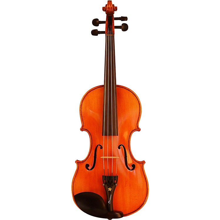 BazziniSpecial Violin Outfit4/4