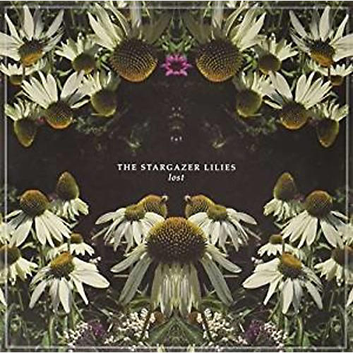 Alliance Stargazer Lilies - Lost