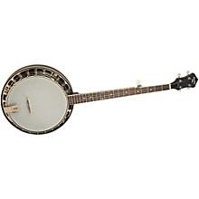 Recording King Starlight Series Resonator Banjo