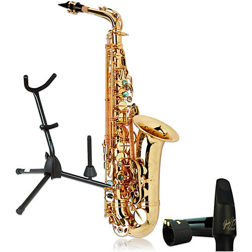 P. Mauriat System-76AGL Professional Gold Lacquered Alto Saxophone Kit-thumbnail