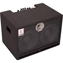 Eden TN2252 225W 2x10 Bass Combo Amp