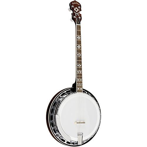 Gold Tone TS-250AT Banjo Natural