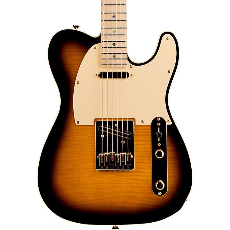 FenderTelecaster Richie Kotzen Solid Body Electric GuitarBrown Sunburst