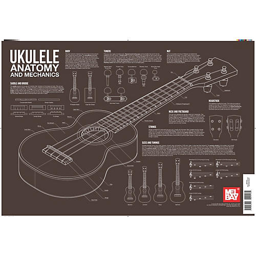 Mel Bay Ukulele Anatomy and Mechanics Wall Chart