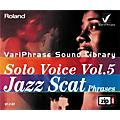 Roland Variphrase Solo Voice Vol. 5 Jazz Scat Phrases Zip Disk thumbnail