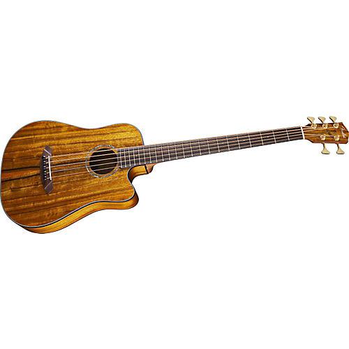 Fender Victor Bailey Acoustic Bass Guitar-thumbnail
