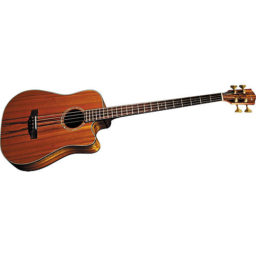 fender victor bailey signature acoustic electric bass musician 39 s friend. Black Bedroom Furniture Sets. Home Design Ideas