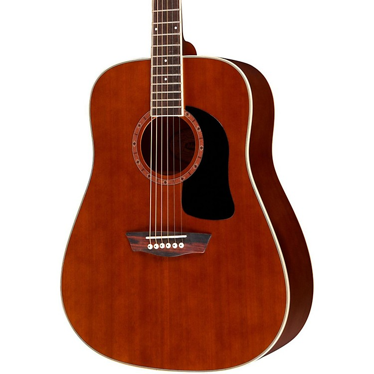 Washburn WD100DL Dreadnought Mahogany Acoustic Guitar Black