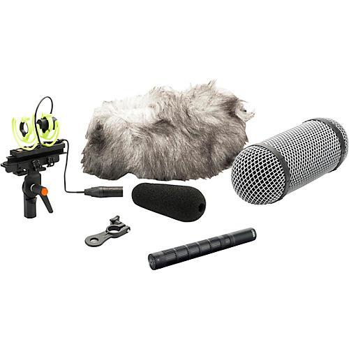 DPA Microphones d:dicate 4017C Compact Shotgun Microphone with Ryocote Windshield-thumbnail