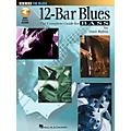 Hal Leonard 12-Bar Blues Bass Book/CD thumbnail